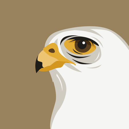 eagle head   vector illustration flat style profile side