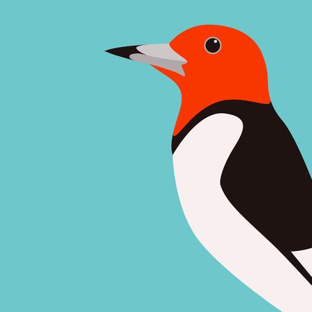pájaro carpintero, vector, ilustración, plano, estilo, perfil, lado