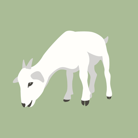 kid goat  vector illustration flat style front side Иллюстрация