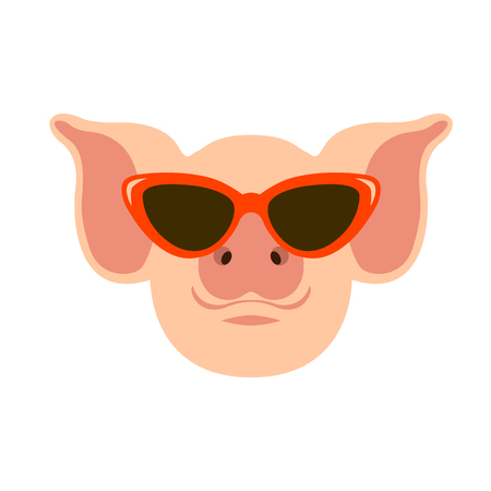 pig in the glasses face vector illustration flat style