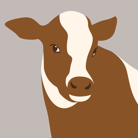calf cow head vector illustration flat style front view