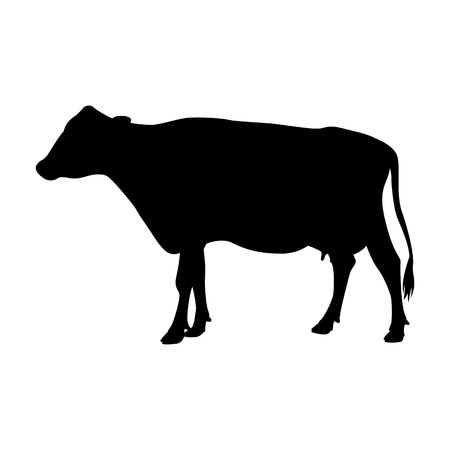 cow   vector illustration  black silhouette  profile side
