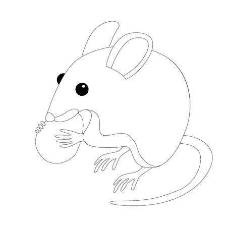 mouse with nut vector illustration  lining draw
