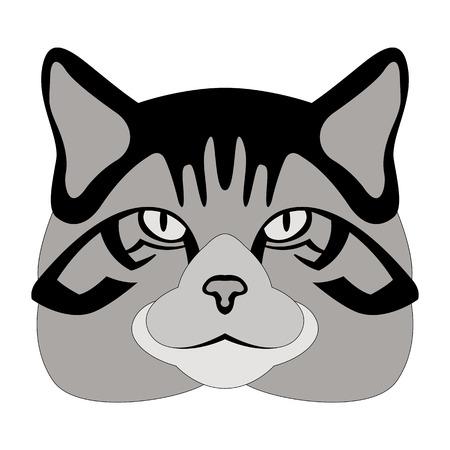 scottish wildcat head vector illustration  flat style Illustration