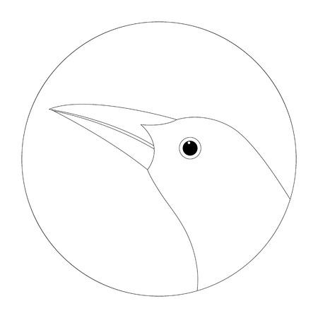 oriole head vector illustration lining draw profile side