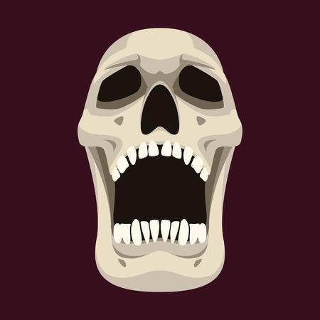 human skull vector illustration flat style  front side