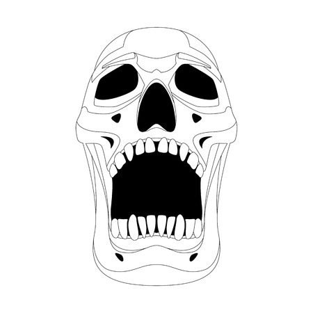 human skull vector illustration lining draw   front side