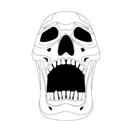 human skull vector illustration lining draw   front side