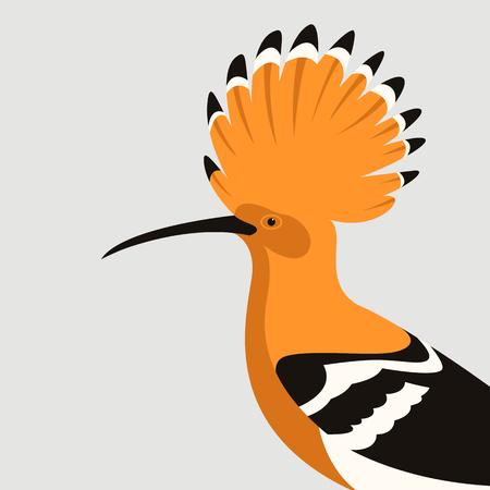 hoopoe bird  vector illustration flat style profile view Illustration