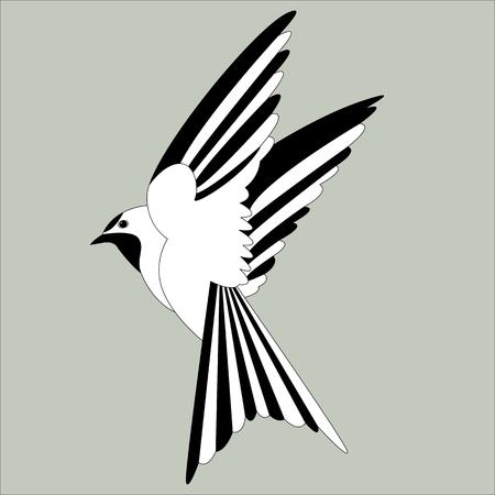 bird swallow  vector illustration   flat style  profile view