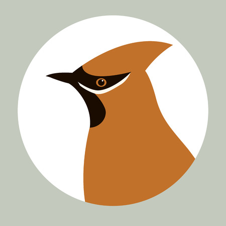 waxwings vector illustration flat style profile view
