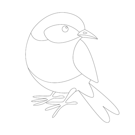 eastern bluebird, lining draw , front view, coloring Illustration