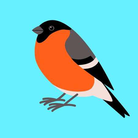 bullfinch bird , flat style ,profile view  イラスト・ベクター素材