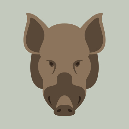 wild boar. vector illustration.flat style,front view