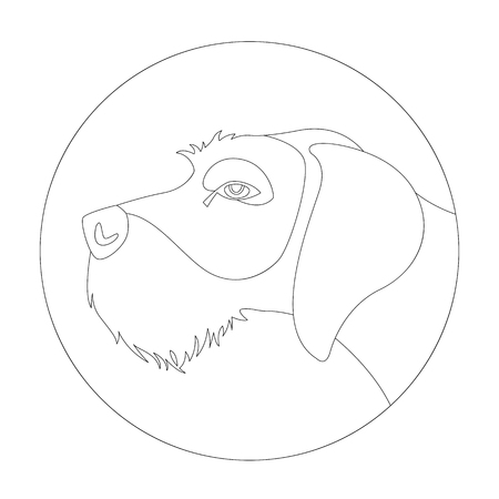 wirehaired  german pointer ,vector illustration ,lining draw