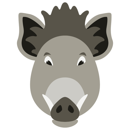 cartoon boar face,flat style, front view