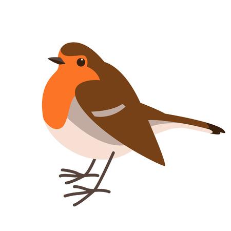 robin bird , vector illustration ,flat style