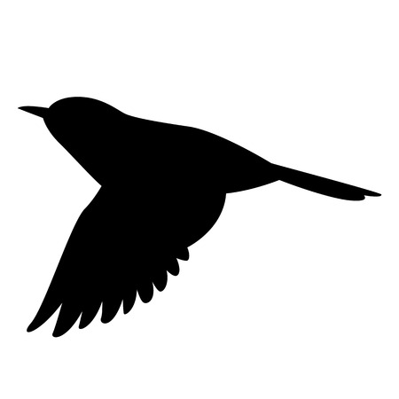 flying flycatcher ,vector illustration , black silhouette