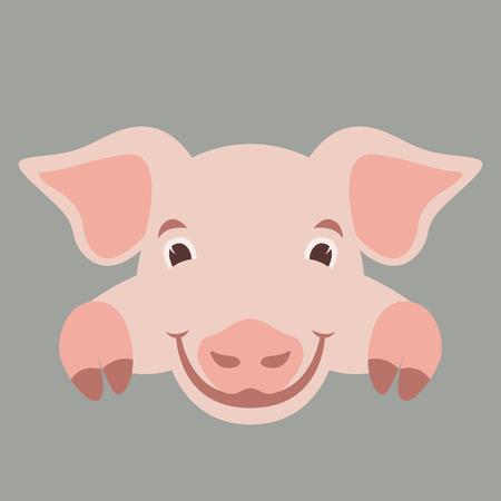 cartoon face pig ,vector illustration, flat style