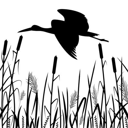black heron flying , vector illustration ,  black silhouette ,profile view