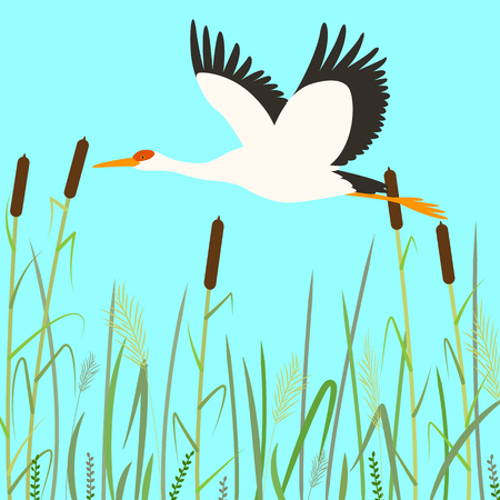 stork flying ,vector illustration,flat style ,profile Illustration