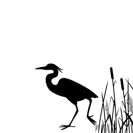 heron walking ,vector illustration, silhouette black
