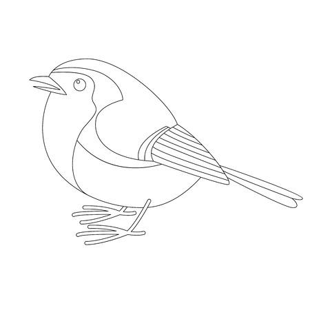 robin bird, vector illustration , lining draw, profile view