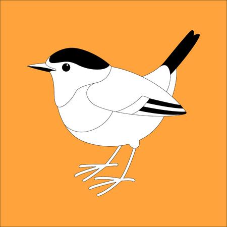 robin bird vector illustration, lining draw ,profile view
