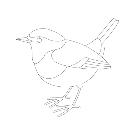 robin bird vector illustration,  lining draw ,profile view