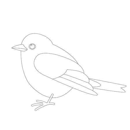 robin  bird , vector illustration ,  lining draw ,profile view