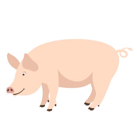 cartoon pig , vector illustration ,flat style ,profile view Illusztráció
