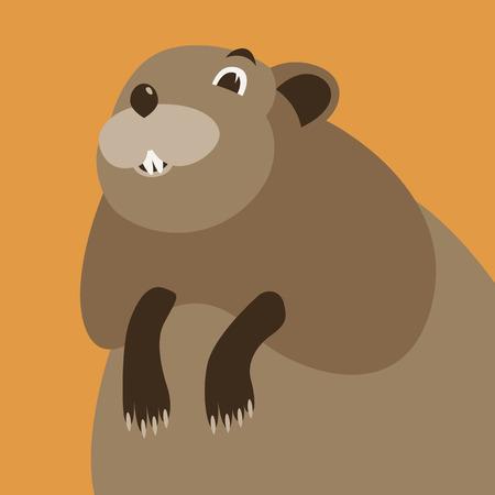 cartoon muskrat face, vector illustration , flat style