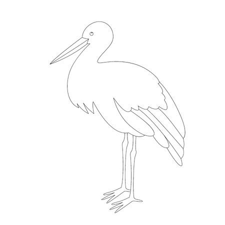 stork stends, vector illustration , lining draw ,profile view Vector Illustration