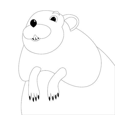 cartoon muskrat face, vector illustration ,  lining draw ,front view