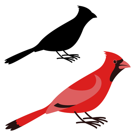 cardinal bird, vector illustration ,flat style ,profile view