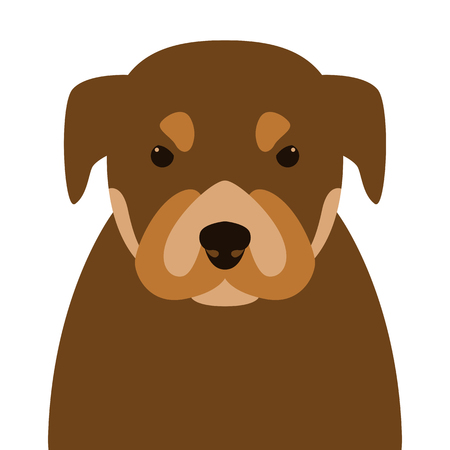 puppy  face , vector illustration ,flat style, front view