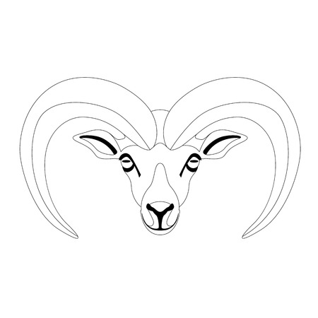 ram face ,vector illustration ,front view , lining draw
