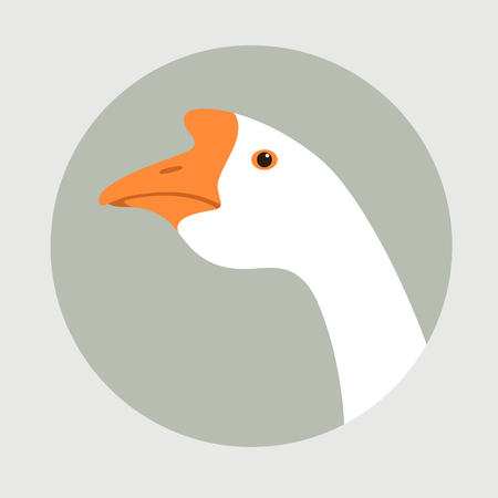 head goose  vector illustration ,   flat style  , profile view Illustration