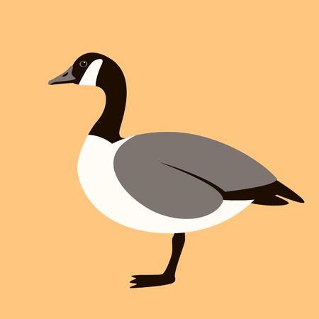oie canadienne, illustration vectorielle, style plat, profil