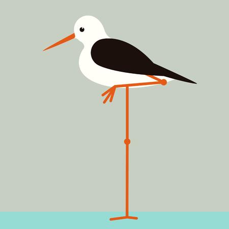 bird sandpiper,vector illustration ,flat style ,profile