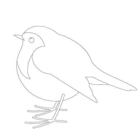 robin bird , vector illustration ,  lining draw, profile view