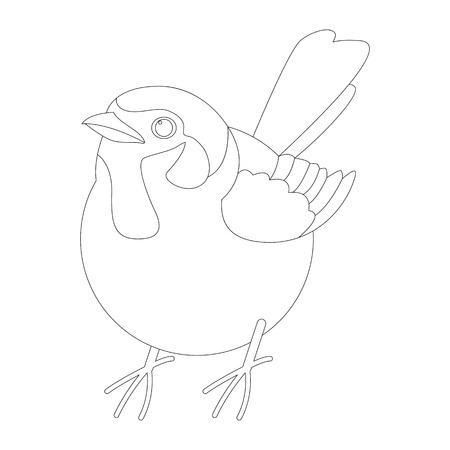 sparrow bird , vector illustration ,  lining draw , front view Ilustração