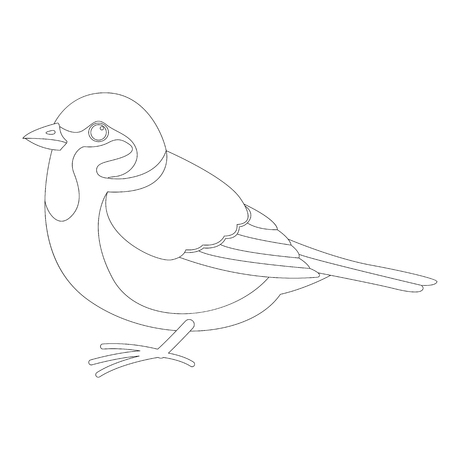 sparrow bird , vector illustration ,  lining draw , profile view