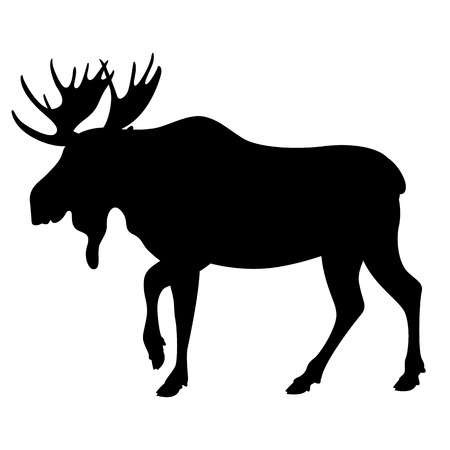 moose, vector illustration , black silhouette profile view Çizim