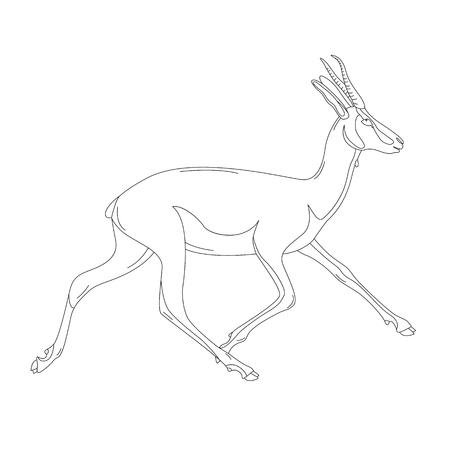 running antelope,vector illustration , lining draw  ,profile view