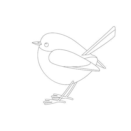eastern bluebird ,vector illustration ,lining draw ,profile view