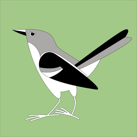 flycatcher bird, vector illustration, lining draw,profile view Ilustração