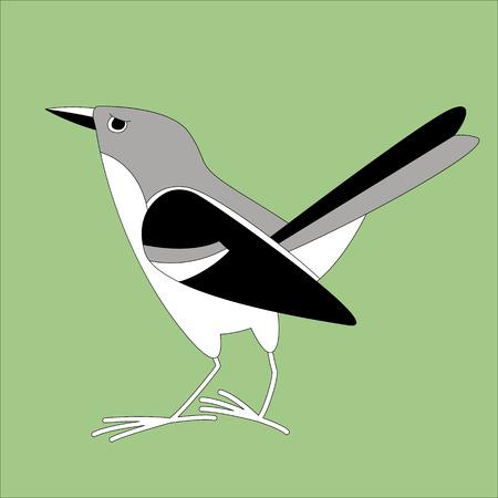 flycatcher bird, vector illustration, lining draw,profile view Illustration