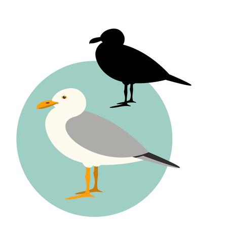 gull set,vector illustration ,flat style,black silhouette
