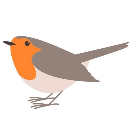 robin bird,vector illustration ,flat style, profile view